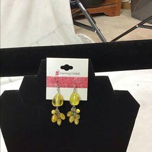💍 NWT Charming Charlie earrings
